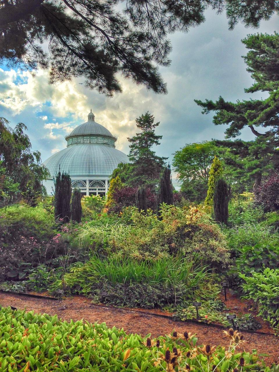 New York Botanical Garden Livebreathecolor